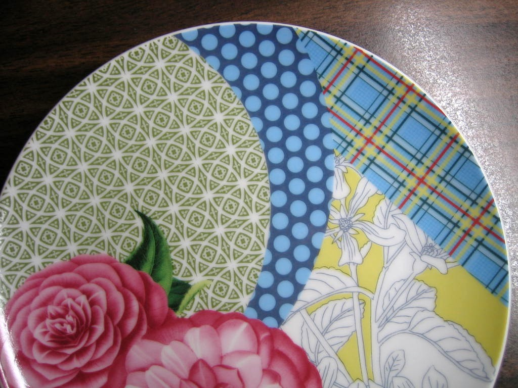 Pink Roses Blue Plaid Polka Dots Yellow Toile Green Geometric Plate Edge www.DecorativeDishes.net