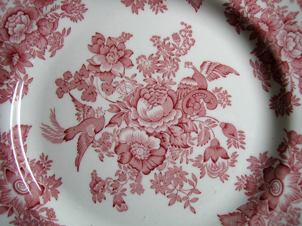 Pink Toile Rose Exotic Bird Paris Chinoiserie Plate Medium Center www.DecorativeDishes.net