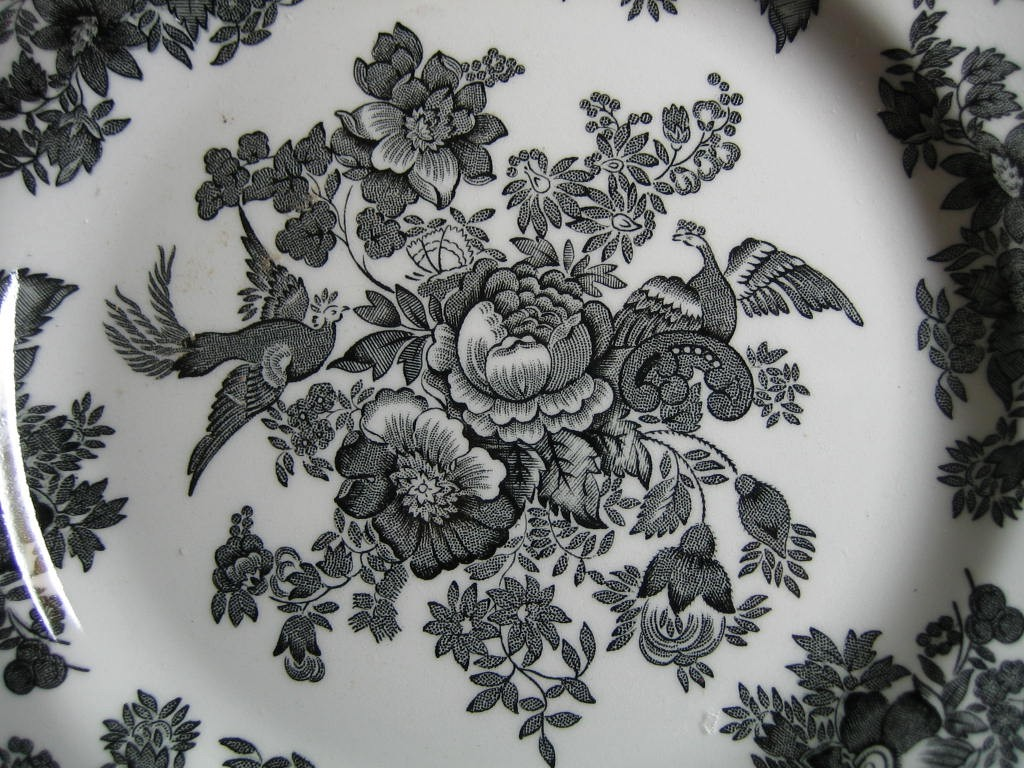 Black Toile Rose Exotic Bird Chinoiserie Paris Plate Medium Center www.DecorativeDishes.net