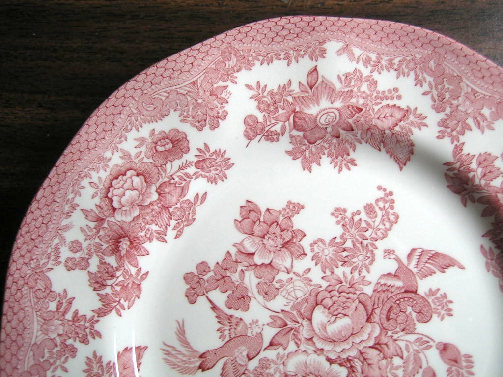 Pink Toile Rose Exotic Bird Paris Chinoiserie Plate Medium Edge www.DecorativeDishes.net