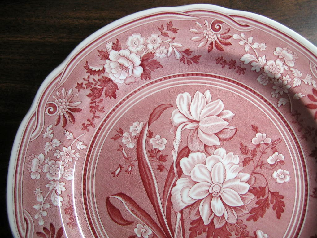 Red Pink Toile Transferware Daffodil Exotic Plate Edge www.DecorativeDishes.net