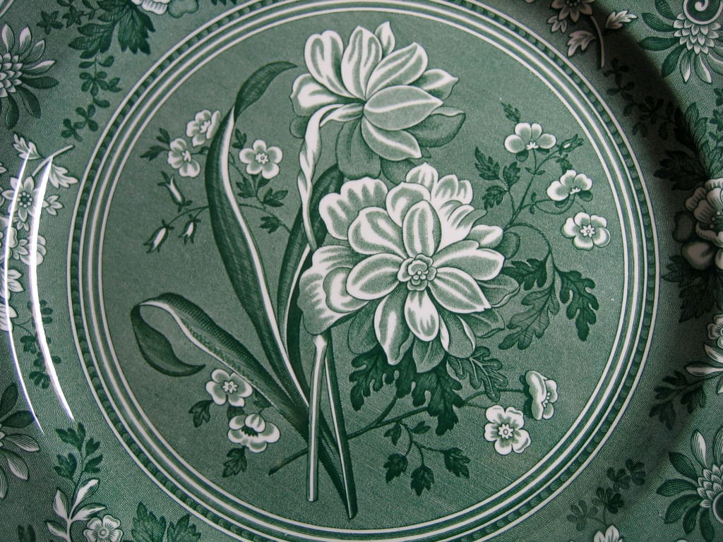 Hunter Green Toile Transferware Daffodil Exotic Plate 
