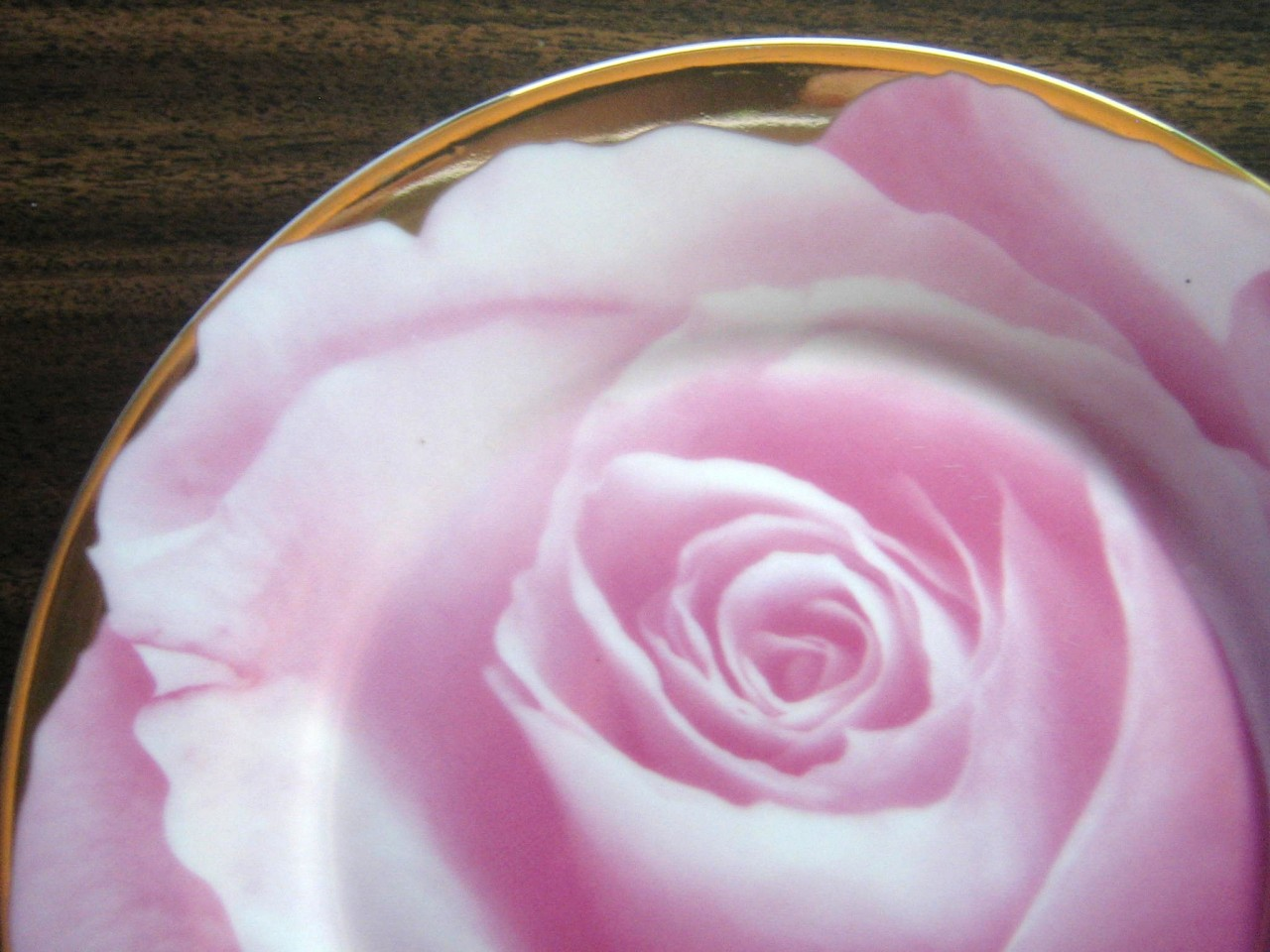 Pink Photographic Rose Bud Shiny Gold Trim Plate Edge www.DecorativeDishes.net