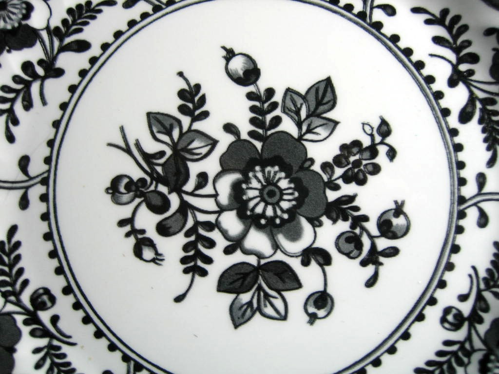 Black on White Exotic Bird Poppy Decorative Euro Style Plate Center www.DecorativeDishes.net